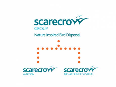 scarecrow group structure (1)