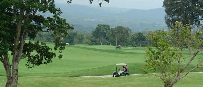 golf-bird-control