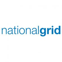 national-grid-bird-control