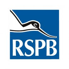 rspb-bird-control