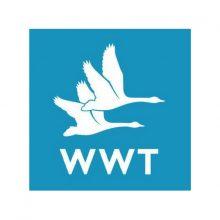 wwt-bird-control
