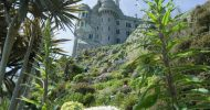 BEFORE with Starlings St Michael's Mount